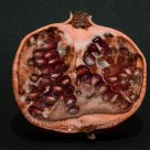 Sectioned Pomegranate