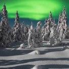 Moonlit auroras