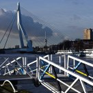 The Swan bridge Rotterdam
