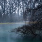 Sommerso, nella nebbia / Submerged, in the fog