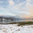 Winter day by the fjord. Bukta Bird Sanctuary - Norway