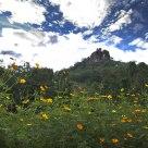 Utuwankanda hill
