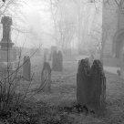 Friedhof - graveyard. In Bochum Stiepel