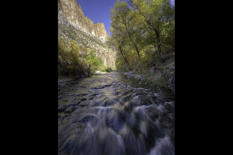 Aravaipa Creek Autumn