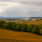 Val d'Orcia Mon Amour