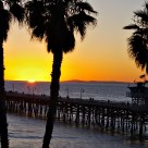 Sunset, Palms, & Pier