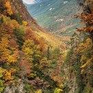 Valle en otoño