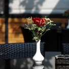 餐桌上的玫瑰