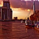 The harbor of Rotterdam