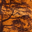 Shadows & Sandstone