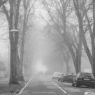 One Foggy Road