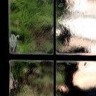 Window Of Capitolini 2
