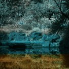 Lake in infrared eyes