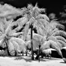 Tahiti in Infrared