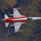 Tiger F-5 Patrouille Suisse