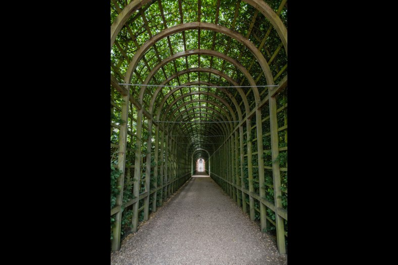 Daylight filtering into the arbour at Hampton Court Palace
