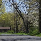 Spring Comes to Upstate New York