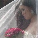 Veiled Roses