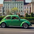 Green Metal Beetle