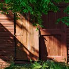 Barn Door in Mornin g Light