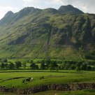 Langdale Beauty