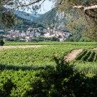 Vue sur Roquebrun