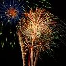 Fireworks Trees
