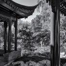 Chinese Fantasia