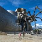 Guggenhein spider