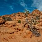 Red Rocks Land