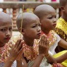 THE YOUNG MONKS