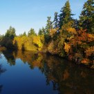 Fall Colors Along The Tualatin River