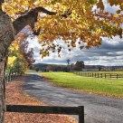 Autumn View of an Upstate NY Horsefarm