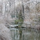 First Snow, The Pond
