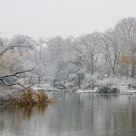 First Snow, The Pond 2