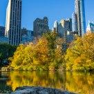 Central Park Pond Fall '13