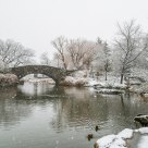 Central Park Pond, First Snow