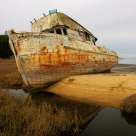 Dead Boat at Point Reyes