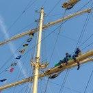 In the mast