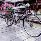 Bici fioriera - Flower Bike