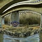 Puente de la Autovia A40