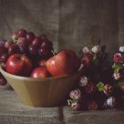 静物,水果和花卉
