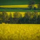 Paysage du Nord de la France