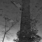 L'ombre de la tour (reflets)
