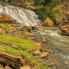 Reedy River 2