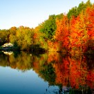 Pond of Autumn