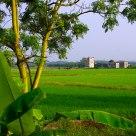 Village in field