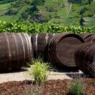 Retired barrels