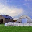 Twilight Farm