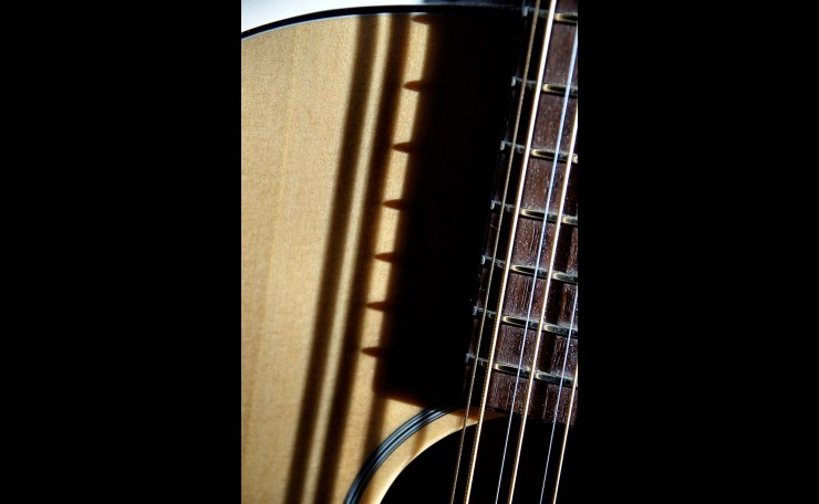 12 String in Late Afternoon Sun